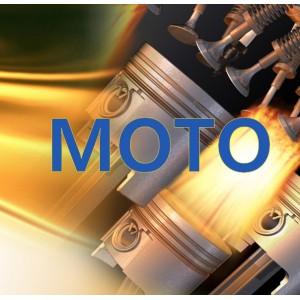 Moto olej